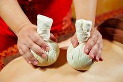 Série tailandesa da massagem: Parte traseira e massagem do ombro, ervas e massagem dos termas, medicina da natureza, ingrediente  foto de stock royalty free