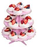 Séries em uma base cor-de-rosa, bolo de Pavlova, isolado Imagem de Stock