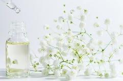 S?rum naturel dans la bouteille cosm?tique avec le compte-gouttes et peu de fleur sur le fond blanc Cosm?tiques organiques de STA images stock