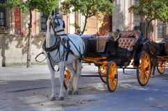 Séville - chariot de touristes de cheval Photographie stock libre de droits
