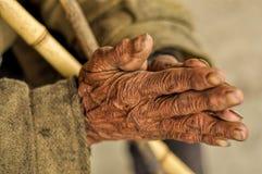 Sênior com mãos enrugadas Fotos de Stock