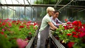 Sênior e jovens mulheres que trabalham junto no jardim no dia ensolarado filme