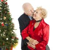 Sêniores do feriado - beijo do Natal fotografia de stock