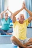 Sêniores que executam a ioga imagens de stock royalty free