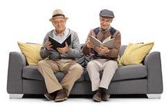 Sêniores que sentam-se em um sofá e em livros de leitura imagem de stock royalty free