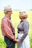 Sêniores românticos Foto de Stock Royalty Free