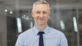 Sì, Grey Hair Businessman Accepting Offer positivo scuotendo testa archivi video