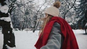 Sígame en el bosque de la nieve, muchacha feliz metrajes