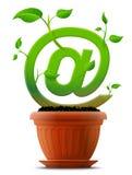 Símbolo cada vez mayor del correo como la planta con las hojas en flujo Imagen de archivo