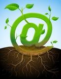 Símbolo cada vez mayor del correo como la planta con las hojas y roo Fotos de archivo