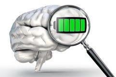 Símbolo completo da energia na lupa e no cérebro humano Fotos de Stock Royalty Free