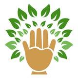 Símbolo da árvore da mão Foto de Stock