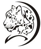 Símbolo da cabeça do leopardo de neve Fotografia de Stock