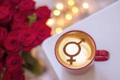 Símbolo da igualdade de gênero imagem de stock royalty free