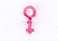 Símbolo das mulheres ilustração royalty free