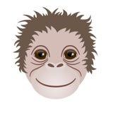 Símbolo de 2016 Cabeça do macaco Imagem de Stock