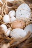 Símbolo de Easter - ovos Foto de Stock