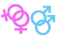 Símbolo de Homosex ilustração royalty free