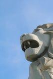 Símbolo de la fuerza en el león Imagen de archivo libre de regalías