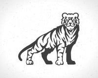 Símbolo de la mascota de la plantilla del emblema del logotipo del tigre Fotos de archivo libres de regalías