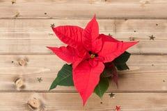 Símbolo de la Navidad Flor de la poinsetia De madera Imagen de archivo