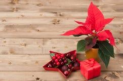 Símbolo de la Navidad Flor de la poinsetia Rectángulo de regalo Fotos de archivo