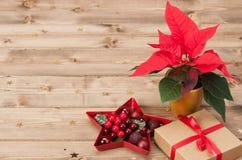 Símbolo de la Navidad Flor de la poinsetia Rectángulo de regalo Foto de archivo