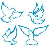 Símbolo de la paloma del vector ilustración del vector
