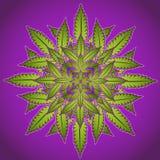 Símbolo de la planta de la marijuana y del cáñamo  Fotografía de archivo libre de regalías