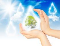 Símbolo de la protección del medio ambiente Fotografía de archivo