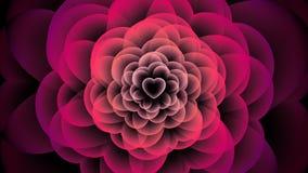 Símbolo de la radiografía de la flor del corazón, animación 4K del color del rosa del ejemplo del diseño de concepto del amor