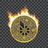 Símbolo de oro de los bitshares Crypto de la moneda en el fuego Fotografía de archivo libre de regalías