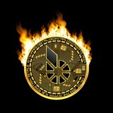 Símbolo de oro de los bitshares Crypto de la moneda en el fuego Fotos de archivo libres de regalías