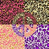 Símbolo de paz del hippie con el estampado leopardo en la variación colorida del papel pintado Forme el diseño para la camiseta,  Fotos de archivo libres de regalías