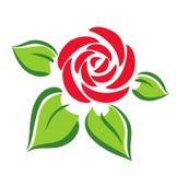 Símbolo de Rosa Imagem de Stock