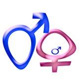 Símbolo de sexo embarazado Imagen de archivo libre de regalías