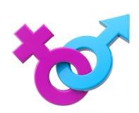Símbolo de sexo masculino e fêmea Foto de Stock