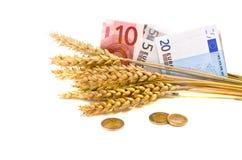 Símbolo del asunto de la agricultura - oídos y euro del trigo Imágenes de archivo libres de regalías