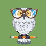 Símbolo del búho del pájaro de la sabiduría stock de ilustración