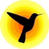 Símbolo del colibrí Imagen de archivo libre de regalías