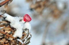 Símbolo del corazón Imagen de archivo libre de regalías