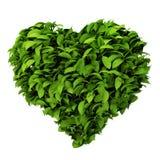 Símbolo del corazón hecho de hojas ilustración del vector