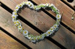 Símbolo del corazón hecho de margaritas Foto de archivo libre de regalías