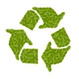 Símbolo del eco de la hoja Imagen de archivo