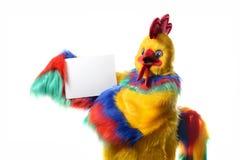 Símbolo del gallo del año 2017 Foto de archivo libre de regalías