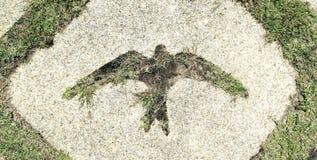 Símbolo del pájaro imagen de archivo