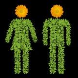 Símbolo del varón y de la hembra de la planta verde Imagen de archivo libre de regalías