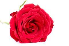 Símbolo do amor Imagem de Stock