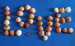 Símbolo do amor feito de shell do mar com fundo azul Fotografia de Stock Royalty Free