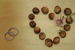 Símbolo do coração do amor e das alianças de casamento Imagem de Stock